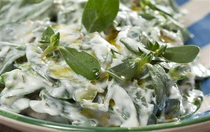 Karatay Mutfağı Yoğurtlu Semizotu Salatası Tarifi